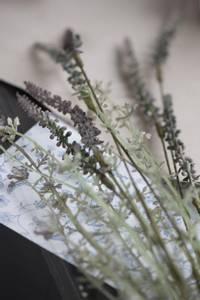 Bilde av Stilk med blomst grålige nyanser