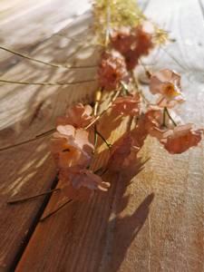 Bilde av Stilk med blomst hvit/beige nyanser